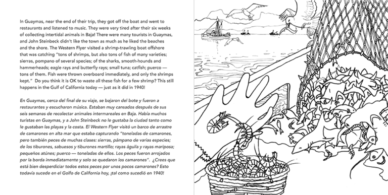 WFF coloring book SPREAD1_Page_26